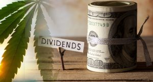 dividend pot stocks to watch