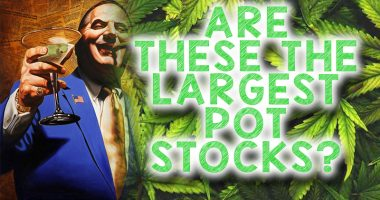 largest pot stocks to watch