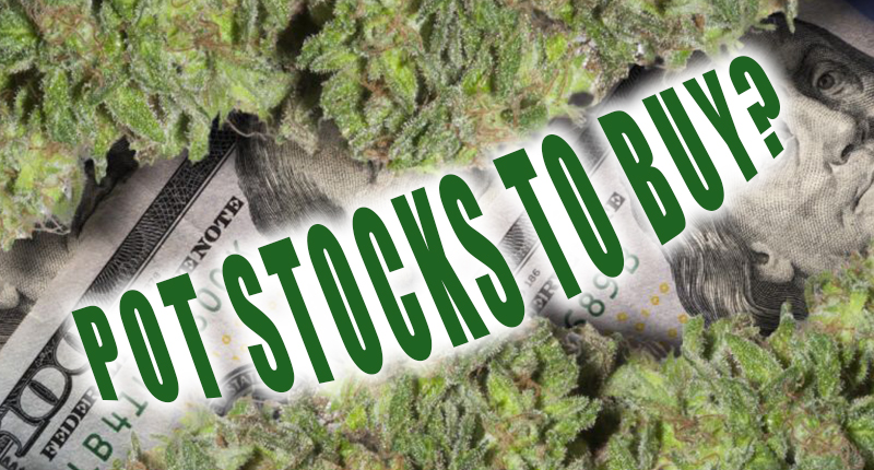 list of pot stocks to buy