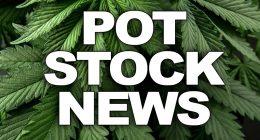 pot stock news