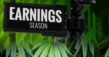 pot stocks earnings
