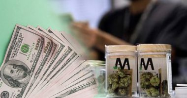 pot stocks to buy 2019