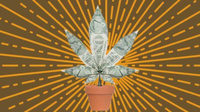 Cannabis-pot-stock