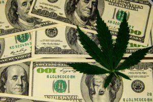 pot stock money