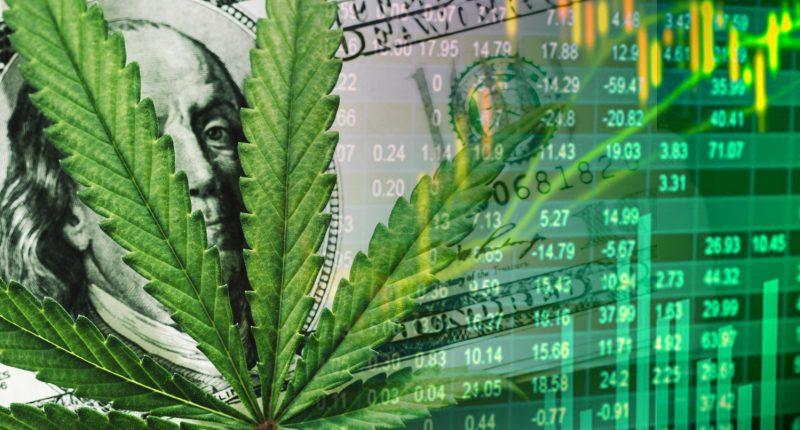 marijuana-stock