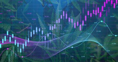 mj stock chart 12