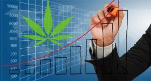 Pot stock chart2