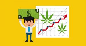pot stock money